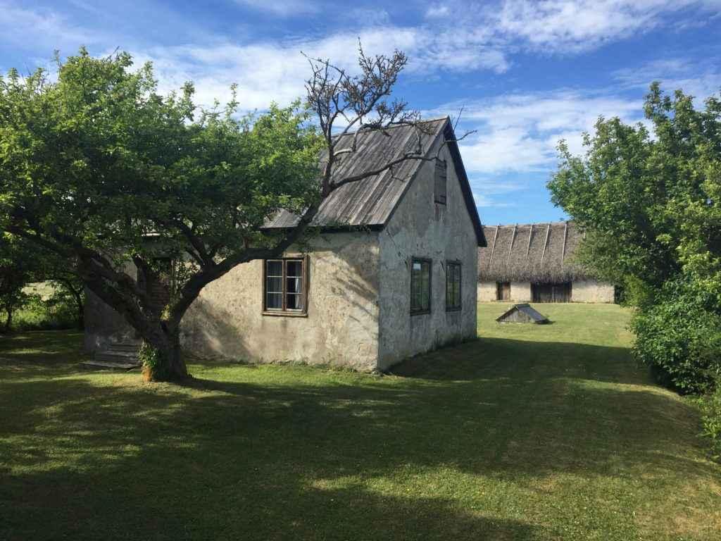 Rone Gotland pic.